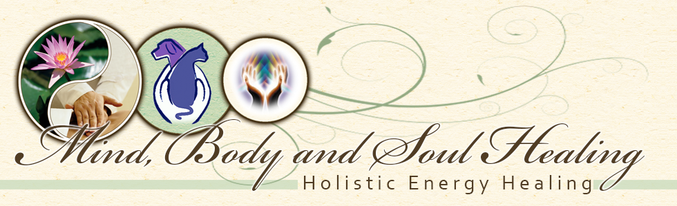mind body and soul healing logo